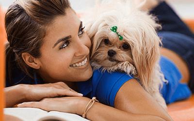 5 Consejos para hacer que un perro esté tranquilo en casa