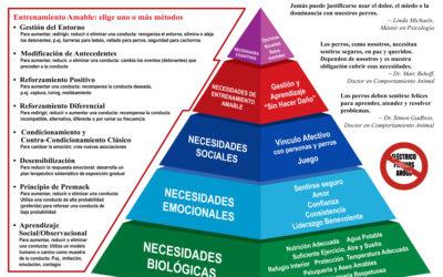 La pirámide de Maslow en perros