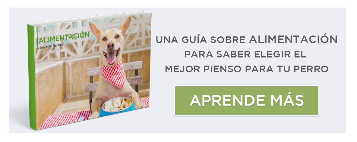 guia alimentacion canina