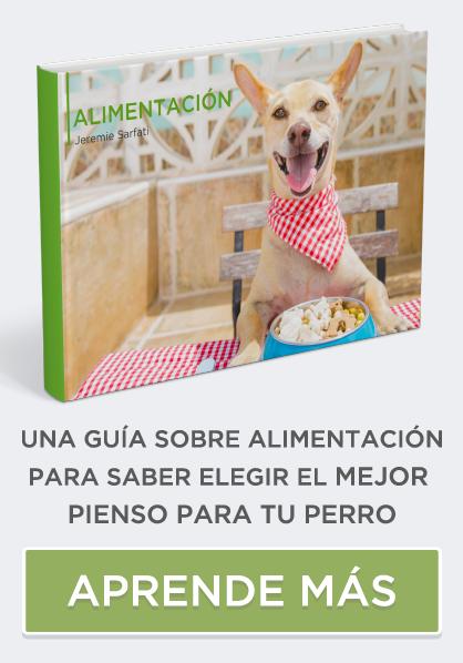 guia de alimentación canina